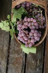 _MG_0877 (leo li) Tags: grape xichang      theqionghailake