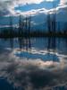 Amanecer en el lago (alvarbuch) Tags: naturaleza agua arboles lagos tff1