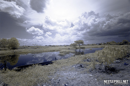 Infrared Photography 2009