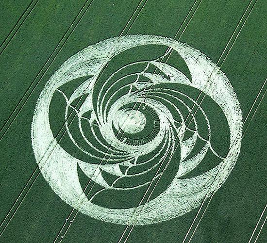 crop-circles-field-photo-15
