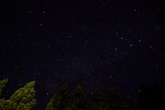 樽石大学から見上げた夜空