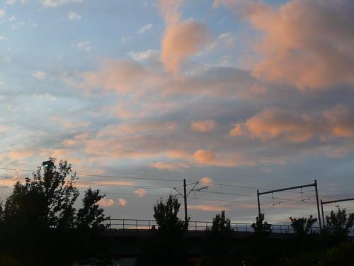 the sky was pretty tonight.