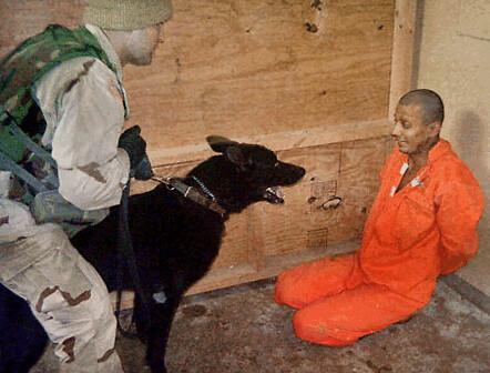 dog Abu Ghraib