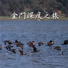 金門深度之旅(DVD)