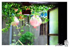 WAN_9579_1024 (Hankwan 黑哥的攝影日記) Tags: 七股 安平 路耳門