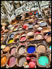 Leather Tanning ! (Bashar Shglila) Tags: leather tanning fes fez morocco marruecos maroc         colors painting natural colours old city work people   mygearandmepremium zoco curtidores tanneries tannerie fs mygearandmebronze mygearandmesilver mygearandmegol