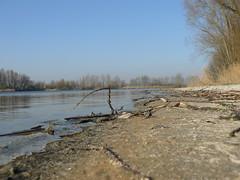 quarry pond - Baggersee (achatphoenix) Tags: bingum quarrypond baggersee water wasser eastfrisia eau leer leerostfriesland see winter februar february icy