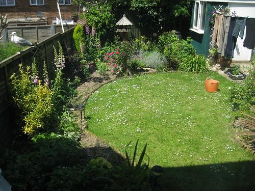 Lower lawn