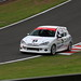 David Williams and Richard Scott, Peugeot 206 at Oulton Park 09