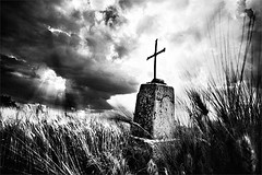 (Effe.Effe) Tags: light sky blackandwhite bw clouds mood cross wheat grain bn kreuz cruz nubes marche senigallia biancoenero croix trigo blé weizen unacroceinmezzoalcampodigranosullacollina