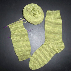 Sundara Sock - Prickly Pear 2