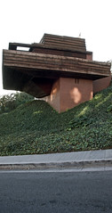 Wright Bark at the Roof (ken mccown) Tags: house home architecture modernism ivy franklloydwright sturgeshouse