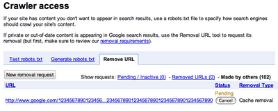 Google Crawler Access