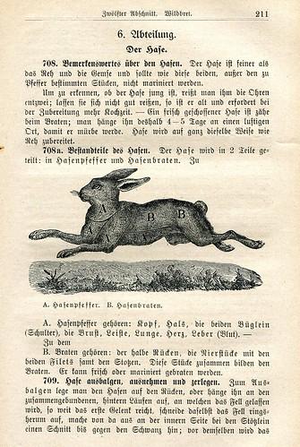 Basler Kochschule - Hase