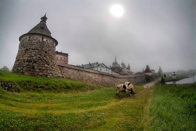 Solovki. Midday fog
