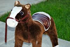 DSC_0079 (Cary Veech) Tags: horse toy pony ponyplay horseyplay