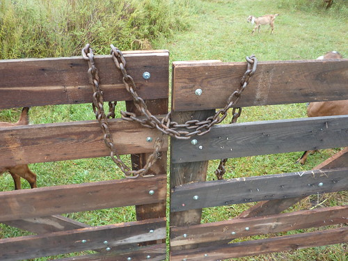 Hillbilly Gate Latch