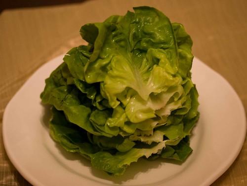 boston lettuce leaves