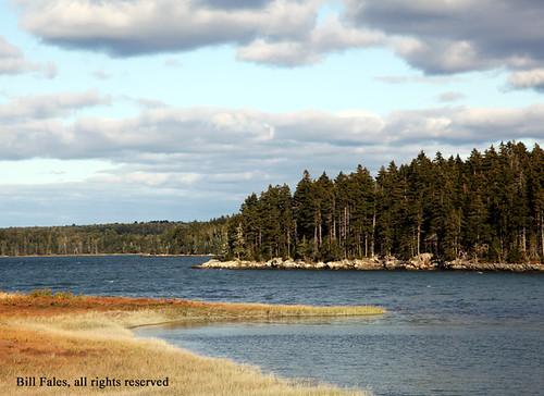 Maine Coast IMG_8320R