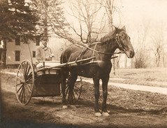Photograph of letter carrier with horse and wagon