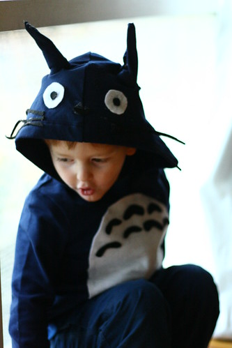 totoro costume by * swonderful *