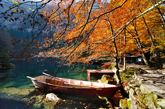 Blausee (Christoph Zurbuchen) Tags: blue autumn mountain lake alps tree fall forest switzerland nikon kandersteg bern blausee d90