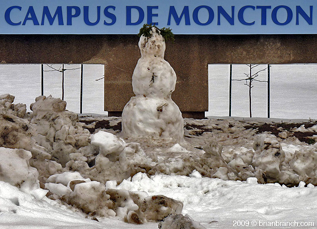 P1070342_campus_de_moncton
