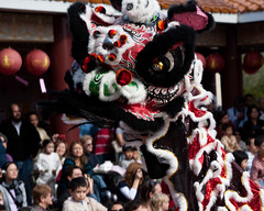 Lion Dance Performers for the Chinese New Years Celebration at the Hsiang Yun Buddhist Temple (Steve Rogers Photography) Tags: austin asian texas dancers chinese chinesenewyear celebration american performers 2010 entertainers hsiangyunbuddhisttemple
