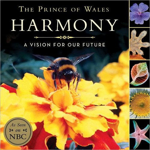 Harmony A Vision for Our Future
