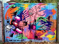 Prozak- Florianópolis 2011 (PROZAK7) Tags: floripa streetart art colors arte saopaulo grafiti prozak spray florianopolis mtn cor artederua mazu mazuprozak