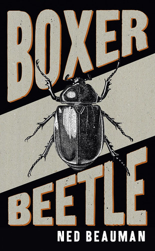 Boxer Beetle_summary
