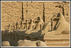 (888) Karnak Temple (Luxor) Egypt (unicorn 81) Tags: travel history architecture trekking geotagged northafrica egypt egyptian egipto karnak luxor 2009 ägypten egitto egypte reise egypten ancientegypt rundreise roundtrip amun egipt égypte mapegypt misr nordafrika theben egypttrip heiligtum april2009 ægypten luxortempel αίγυπτοσ ægyptusintertravel ägyptenreise schulzaktivreisen meinjahr2009
