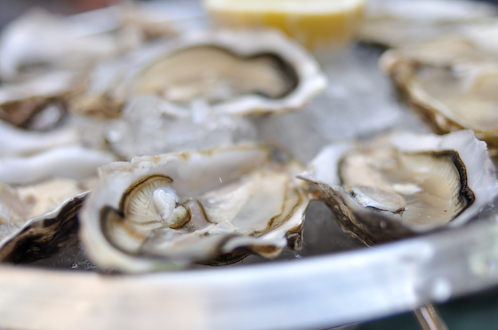 Bentley's Oysters