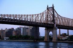 Queensboro Bridge & Roosevelt Island (Just_Julien) Tags: nyc newyorkcity ny newyork skyline cityscape skyscrapers manhattan eastside newyorknewyork bigcity ilovenewyork 900x1350 julienaleksandres