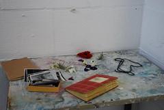 Ophelia diary (thalysia) Tags: diary ophelia