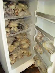 RAPTOR freezer