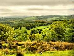 Brendon Hills,Exmoor, Somerset (saxonfenken) Tags: green landscape geotagged somerset explore superhero fields exmoor e500 brendonhills friendlychallenges may2009 thechallengefactory yourock1st pregamewinner