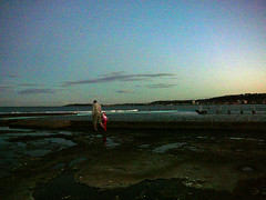 20090607_misc_0167 (frannyfish) Tags: narrabeen