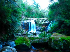 IMG_5847 (billdog) Tags: australia tasmania tassie downunder
