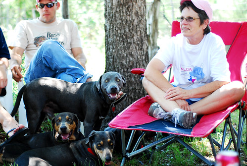 Betty Leek of the NLDR with her Lacy Dogs
