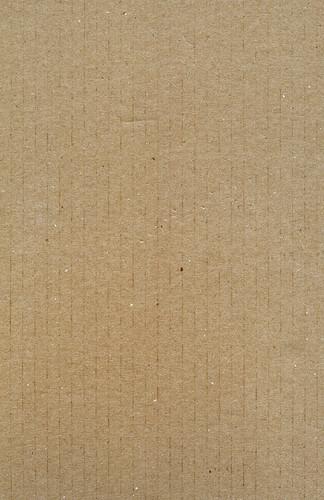 cardboard lite 1
