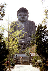 Great Buddha, Beppu, Japan, R & R (dmclean2009) Tags: 58th railroad bridge people rescue mountain field station japan hospital river army harbor tank ships chinese bridges railway korea helicopter korean seoul temples cannon artillery globemaster helicopters division southkorea bomber shinto 3rd m4 han namdaemun northkorea koreanwar yongsan papasan southgate 1000steps namsan pows b26 beppu battalion sungnyemun inchon 105mm howitzer trob greatbuddha prisonersofwar m46 greatsouthgate oldbaldy irontriangle 155mm whitehorsemountain tmrs c124 712th trsb guncrew chorwon 724th kumhwa pyonggang sintanni taekwangni outpostharry 765th