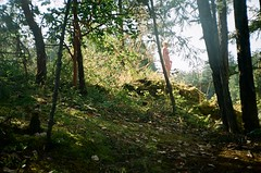 01030024 (bekkika) Tags: trees light green girl robin forest dress slope thetis meikai