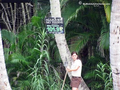 IMG_2095-Naples-Florida-zoo-gator-feeding-time