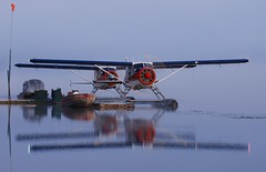 Beavers in the Morning (t i g) Tags: morning reflection alaska plane airplane fishing dock aircraft aviation flight beaver floatplane dehavilland arl kindel dhc2 photo365 photo365kindel