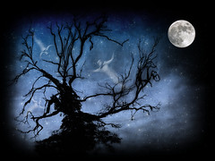 Ghostly Tree (Weeping-Willow Photography) Tags: sky moon tree texture halloween stars scary ghost bat creepy fullmoon spooky samhain mysterious ghosts witches summersend bats allhallowseve creepytree starrysky