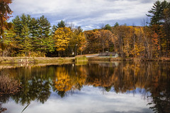 Autumn in New Hampshire (Werner Kunz) Tags: life autumn trees
