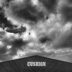cushion (Nick J Stone) Tags: wood sky bw cloud monochrome weather norwich cushion weatherphotography barnroad nickstone wethare