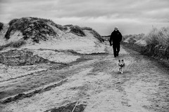 Man & Dog (teltone) Tags: anotherplace waterloo sony sonyrx100mk4 seftoncoast liverpool merseyside beach anthonygormley winter flaneur mirrorless street sefton uk shoplocal home culture fab afternoon sonyrx100m4