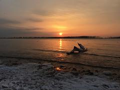 Frosty Morning IMG_4241 (iloleo) Tags: sunrise cherrybeach toronto iphone scenic lakeontario winter colourful nature beach landscape